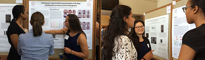 Landmark Conference Summer Research Symposium